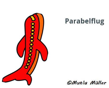 Parabelflug